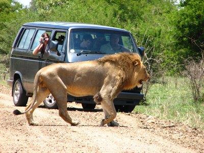 Национальные парки в Южной Африке