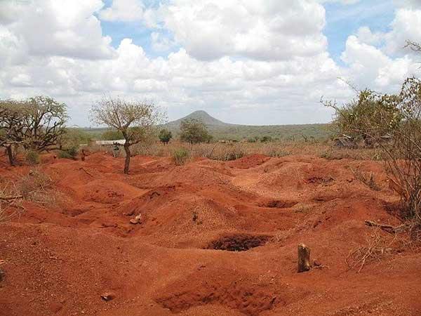 красная почва в Африке