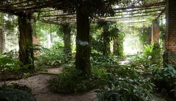 ботанический сад Кисанту