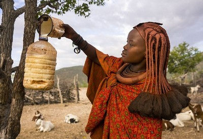 Племя хімба