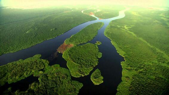 африканский лес и Нил